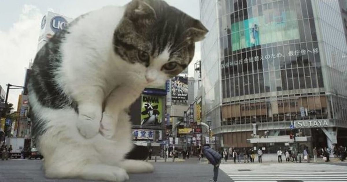 8 111.jpg?resize=1200,630 - This Guy Photoshops Cats Into Giants And The Result Is Purrfect