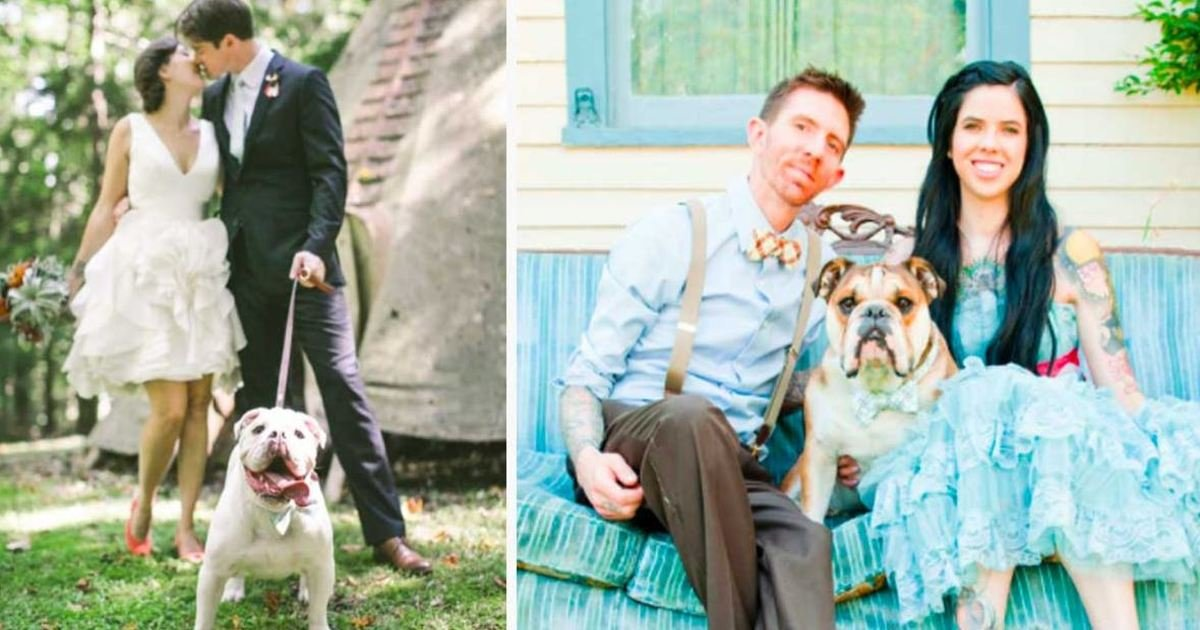 8 87.jpg?resize=1200,630 - 10+ Hilarious Dogs Who Stole The Show At Their Owners' Weddings