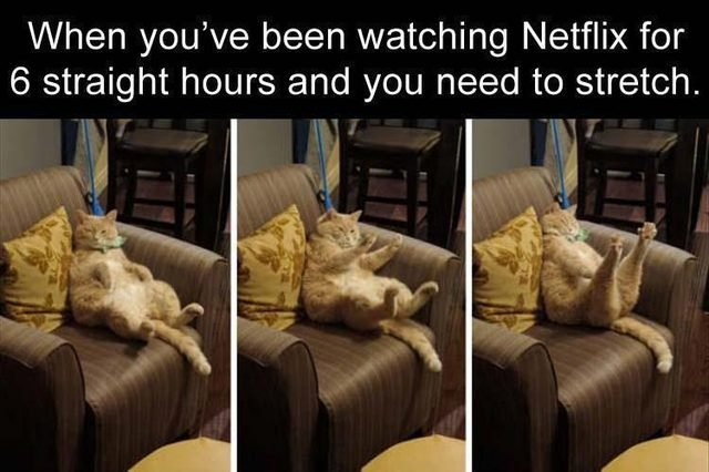 Funny meme about watching Netflix too long and needing to stretch with a fat cat stretching