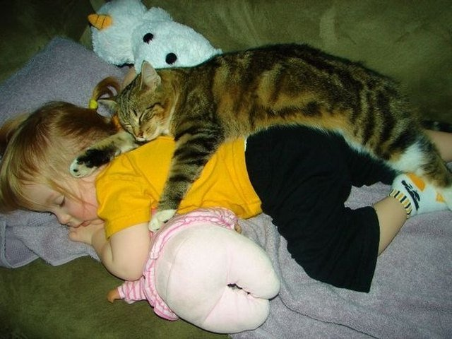 Cat and baby sleeping in pile of stuffed animals.