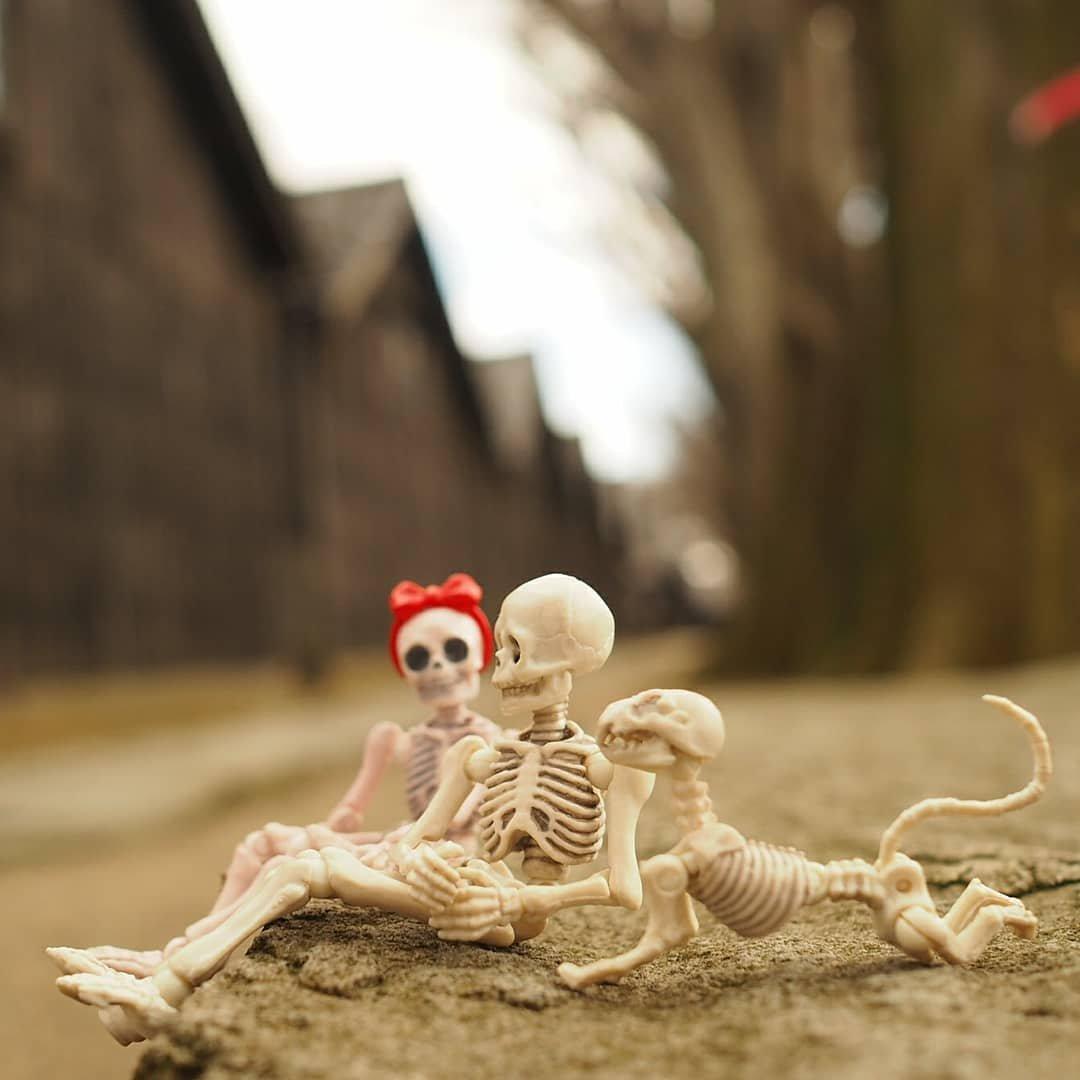 「ずっと寝ていると 骨 スカスカ」の画像検索結果