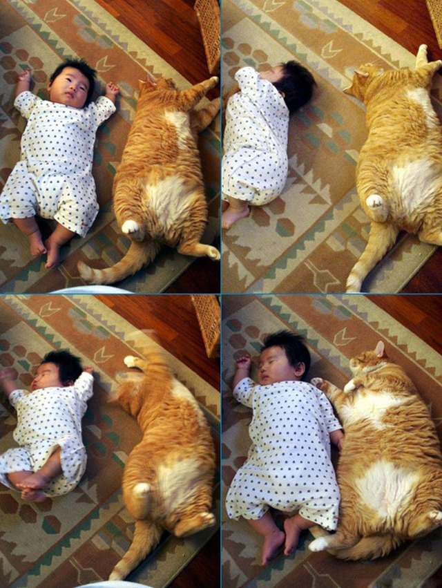 Cat and baby lounging on carpet.