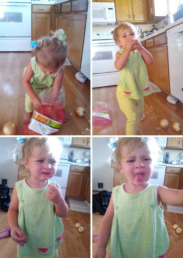 My Daughter Wanted An Apple. Like A Good Mom I Grabbed A Camera When She Pulled This Bag Off The Counter Herself