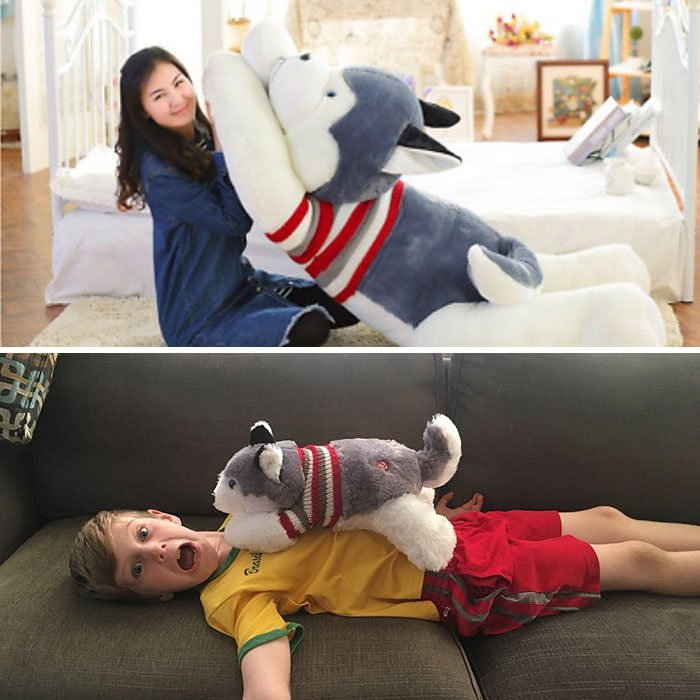 """Kai Ordered This """"Pillow Husky"""" On Ebay. It Came Today... Not Quite The Same As Advertised"""