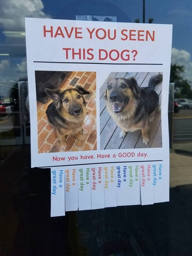 Dog on a poster.