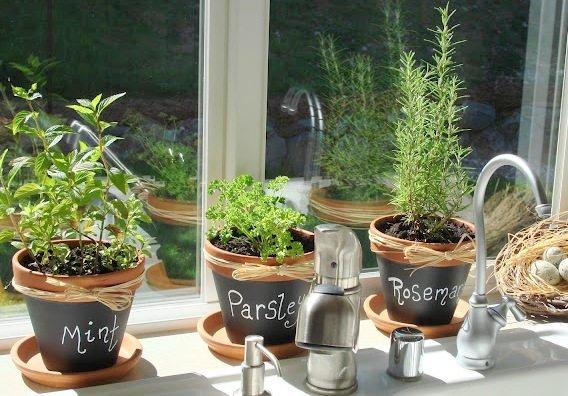 herb-garden-chalkboard-paint