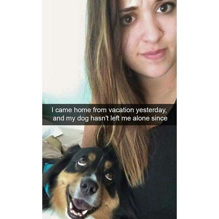 dog-16