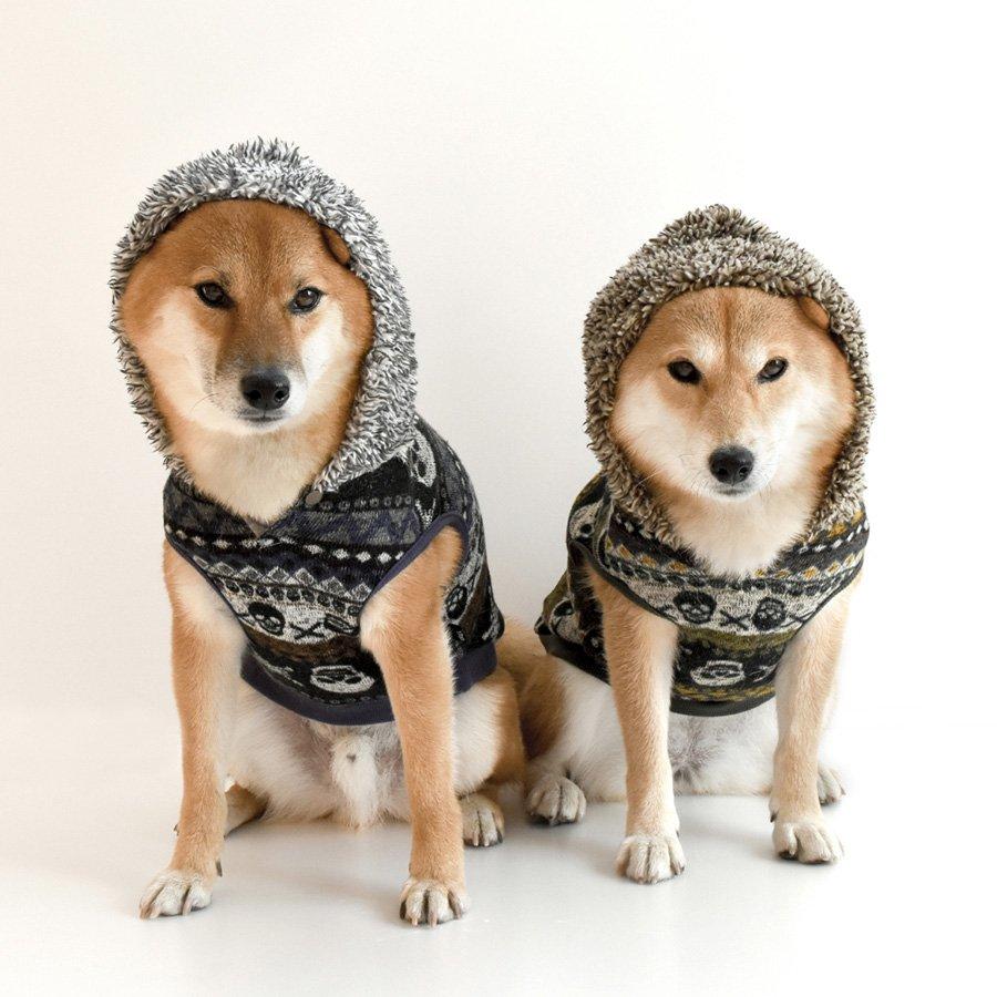 「愛犬 服」の画像検索結果