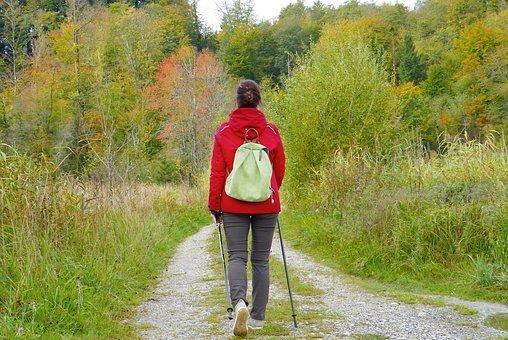 여자, 소녀, Walken, 산책, 배낭, 밖으로, 자연, 숲, 목초지