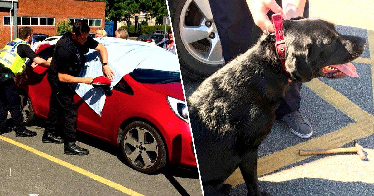 a 4.jpg?resize=636,358 - Cops Smash Window Of Blazing-Hot Car To Rescue Dogs Trapped Inside In Sweltering Weather