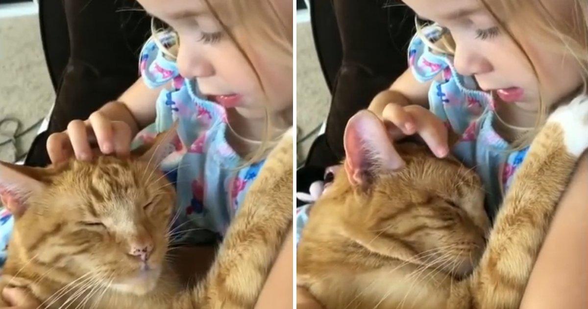 capa98k.png?resize=636,358 - Garotinha canta canção de ninar para seu gatinho