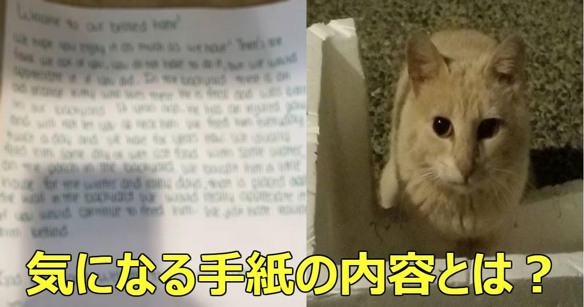 cat.png?resize=412,232 - ある日引っ越し先の家に置かれた手紙。その内容に涙なしにはいられない!