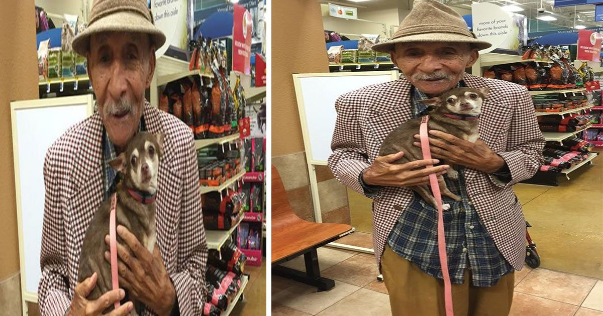 chihuahua shaking old man holds.jpg?resize=412,232 - Un vieil homme a tenu un Chihuahua tremblant et tout a changé