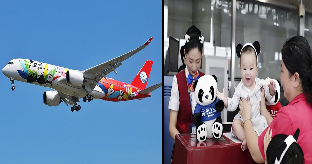 china 1.jpg?resize=1200,630 - China's Sichuan Airways Launches A Panda-Themed Flight