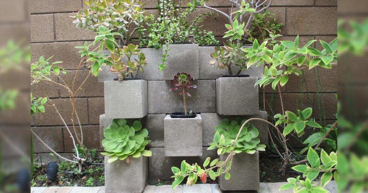 cover22 52.png?resize=1200,630 - 15 Técnicas accesibles que ayudarán a transformar tu jardín sin gastos innecesarios