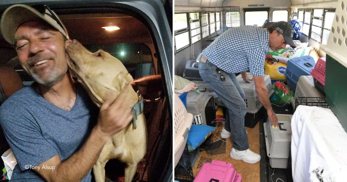 coverperro.jpg?resize=412,232 - Un hombre rescató a 64 perros y gatos del huracán Florence con un autobús escolar
