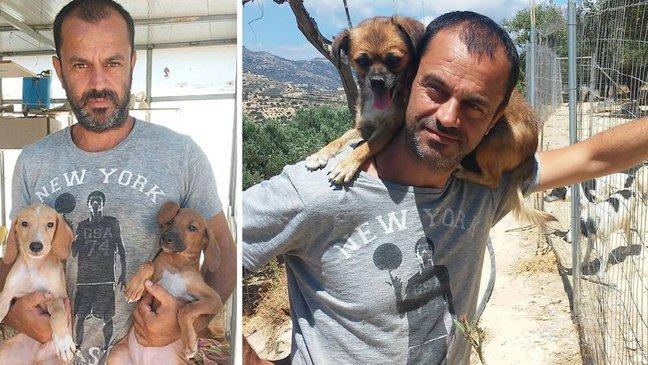 dog saviour 1.jpg?resize=300,169 - Dentista desiste da carreira para salvar cachorros abandonados - E ele já salvou 500 até agora