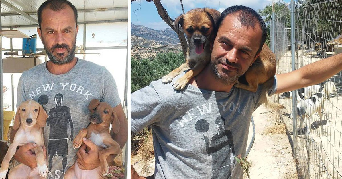 dog saviour.jpg?resize=1200,630 - Dentist Gave Up His Career To Save Dogs - Now He Owns A Dog Sanctuary And Has Saved 500 Dogs So Far