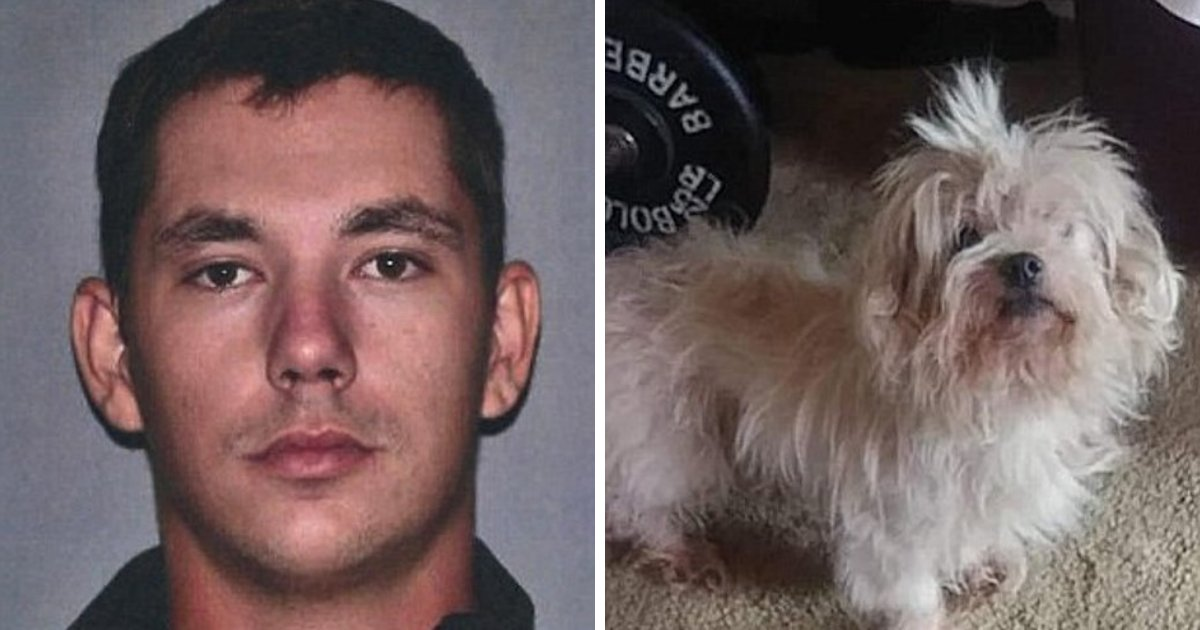 dog5.png?resize=1200,630 - Man Arrested And Charged After Leaving Dog Behind His Home Because It Didn't Get Along With New Kitten