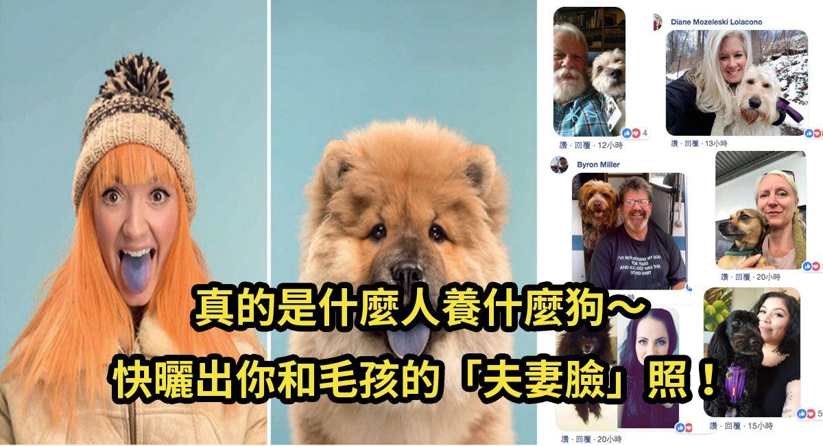 e4babae78b97e785a7.jpg?resize=412,232 - 英國攝影師釋出一系列有著「夫妻臉」的人狗照,網友不甘示弱也開始曬毛孩子啦!