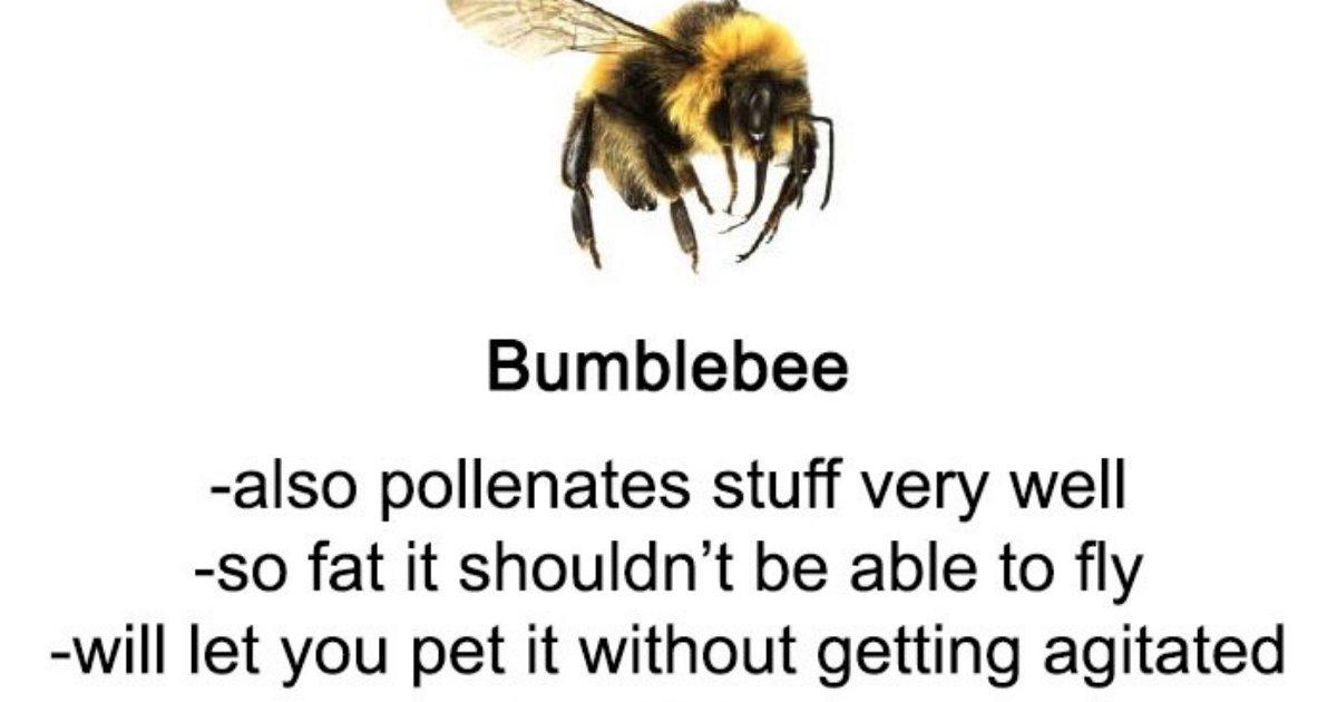 guide.png?resize=1200,630 - Quelqu'un a écrit un guide hilarant sur les abeilles et les guêpes, un excellent moyen d'apprendre quelque chose de nouveau!