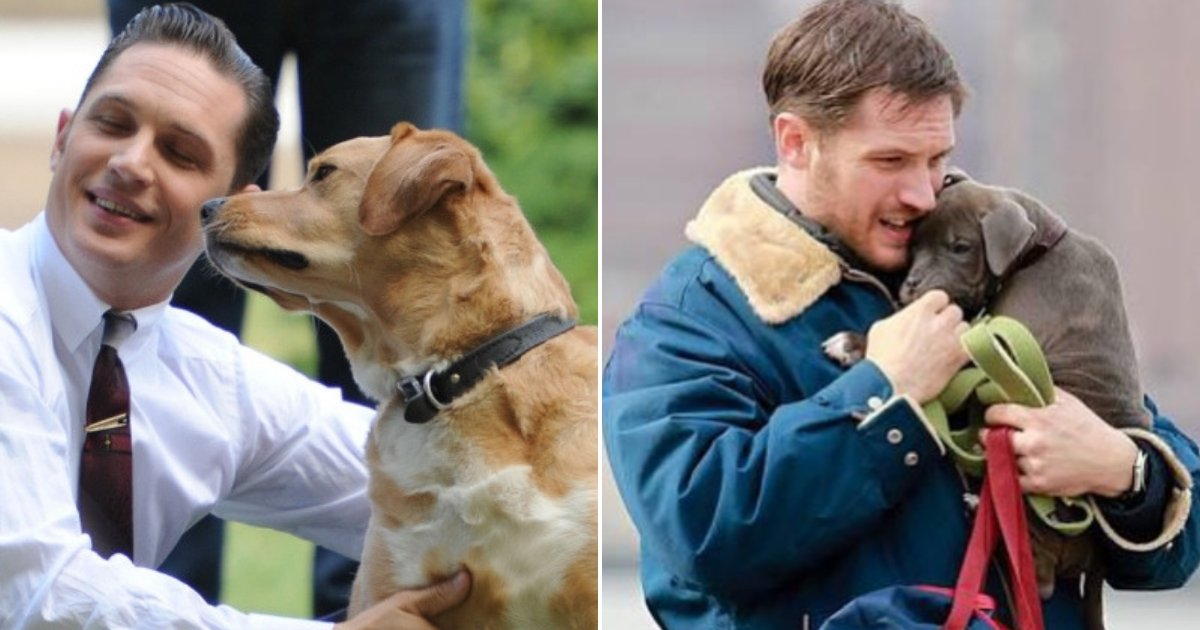 hardy.png?resize=636,358 - These Photos Of Tom Hardy Hugging and Playing With Dogs Prove He Is An Incredible Person