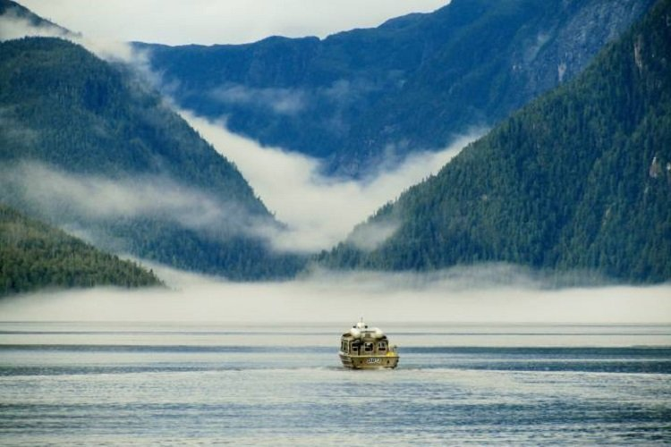 l2 2 1.jpg?resize=412,232 - Guests At A Canadian Lodge Get A Rare Treat As Humpback Whales Swim Up