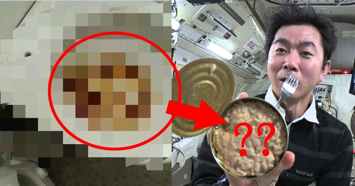 popp.jpg?resize=412,232 - 自身の「うんこ」を宇宙食として変えられる時代が来るのもそう遠くはない?