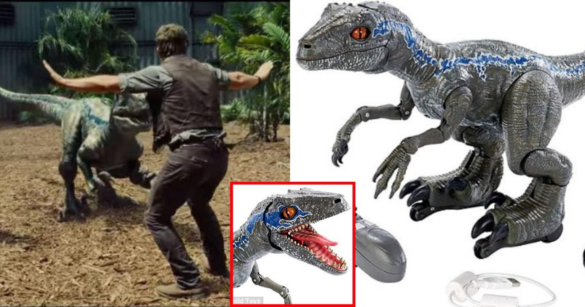 raptor6.png?resize=636,358 - You Can Now Train The Snarling, Walking And Squawking Jurassic World Robot Raptor, Just Like Chris Pratt In The Hit Movie