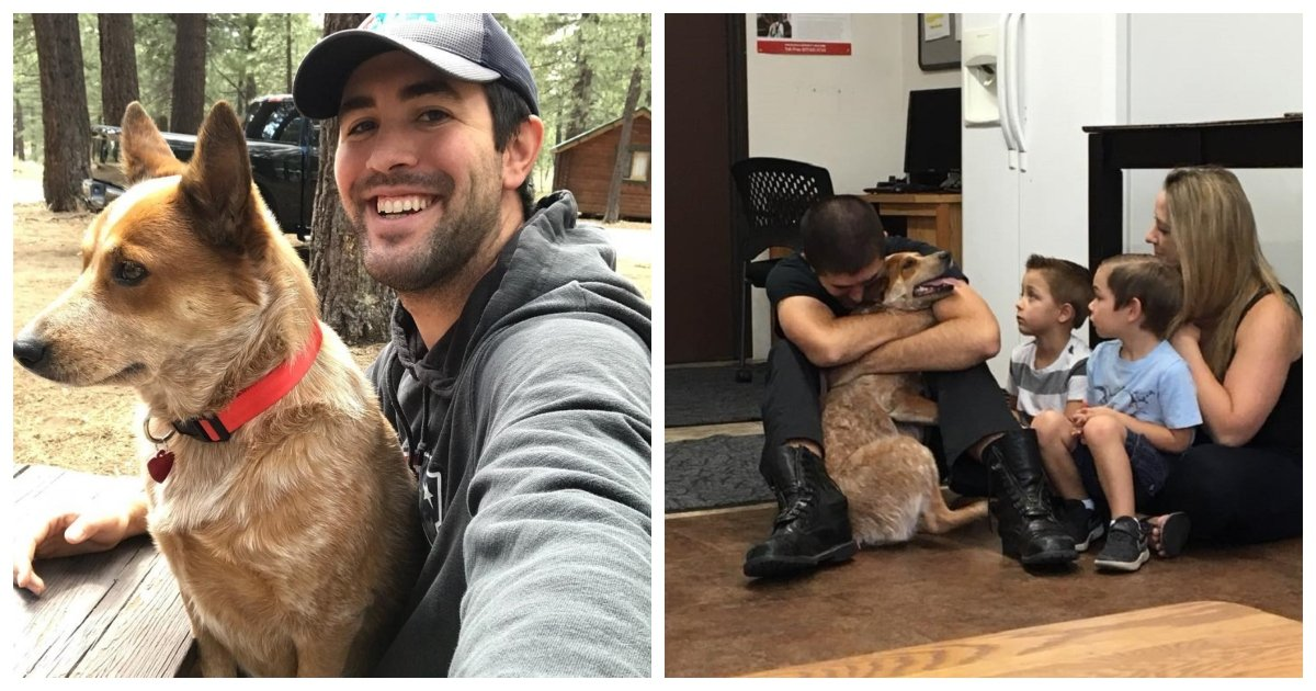 reunited.jpg?resize=636,358 - Dog Remarkably Survives For 28 Days In The Eastern Sierras And Eventually Gets Reunited With Owner