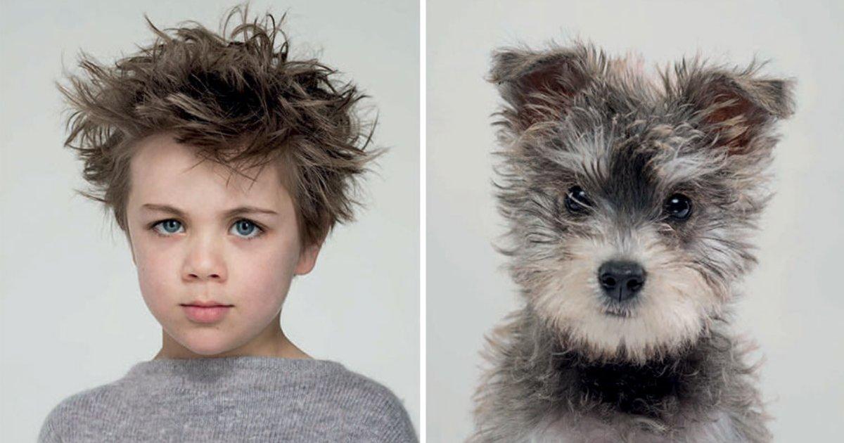 untitled design 15.png?resize=1200,630 - La ressemblance entre ces chiens et leurs maîtres est incroyable