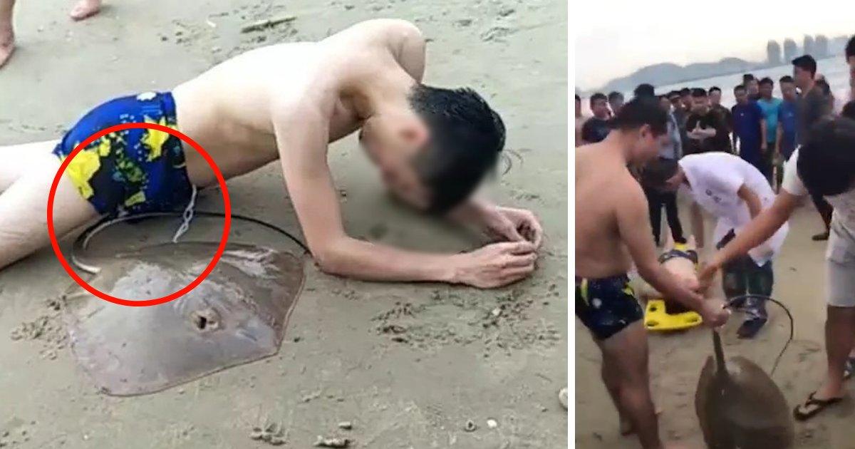 untitled design 18.png?resize=300,169 - Une raie s'accroche aux organes génitaux d'un homme pendant qu'il nage en mer.