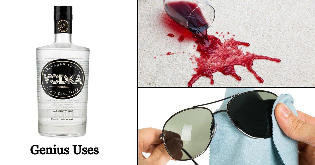 vodka uses.jpg?resize=1200,630 - Genius Hacks: 15 Reasons Why You Should Keep VODKA Always In Your Pantry