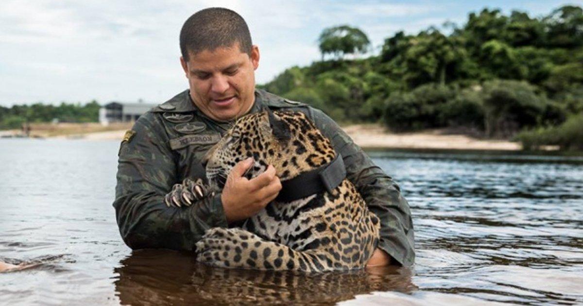 1 135.jpg?resize=636,358 - 13 Animales que no olvidaron agradecer a las personas que los ayudaron