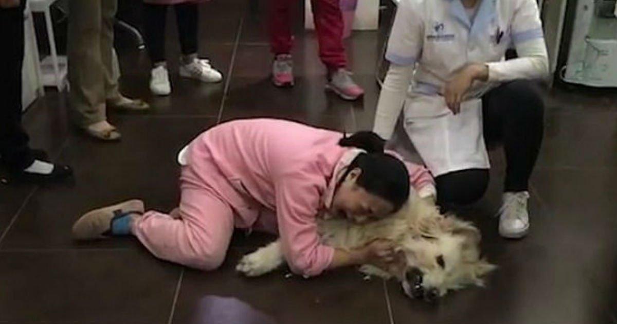 1 264.jpg?resize=1200,630 - 近所の人に「毒された」犬を抱きながら号泣する女性