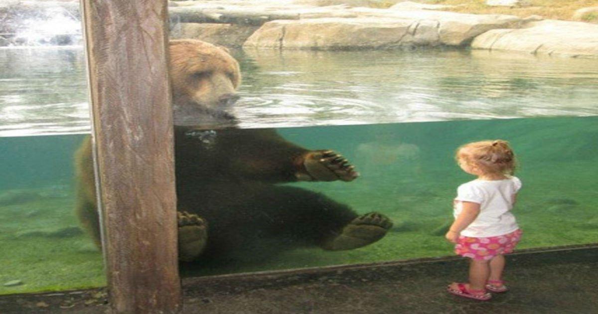 10 7 1.jpg?resize=1200,630 - 30 exemples qui prouvent que les enfants et les animaux sont faits pour se rencontrer.