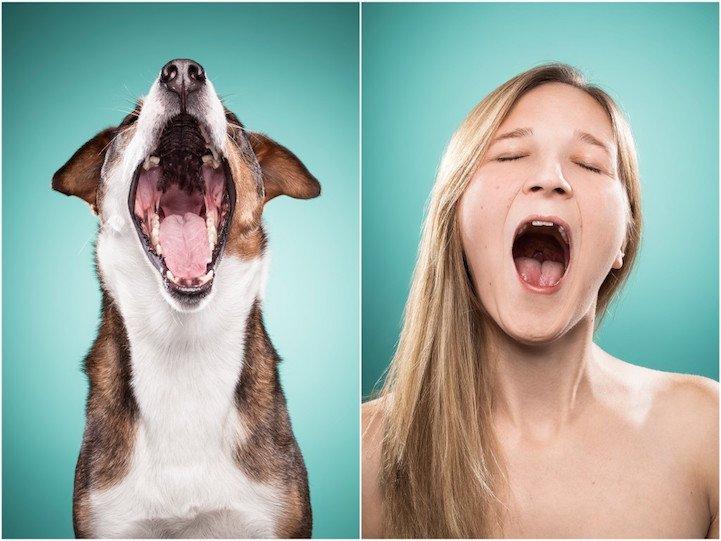 11 103.jpg?resize=1200,630 - [Photos] Elles photographies des chiens et leurs maîtres pour mettre en avant leurs ressemblances.