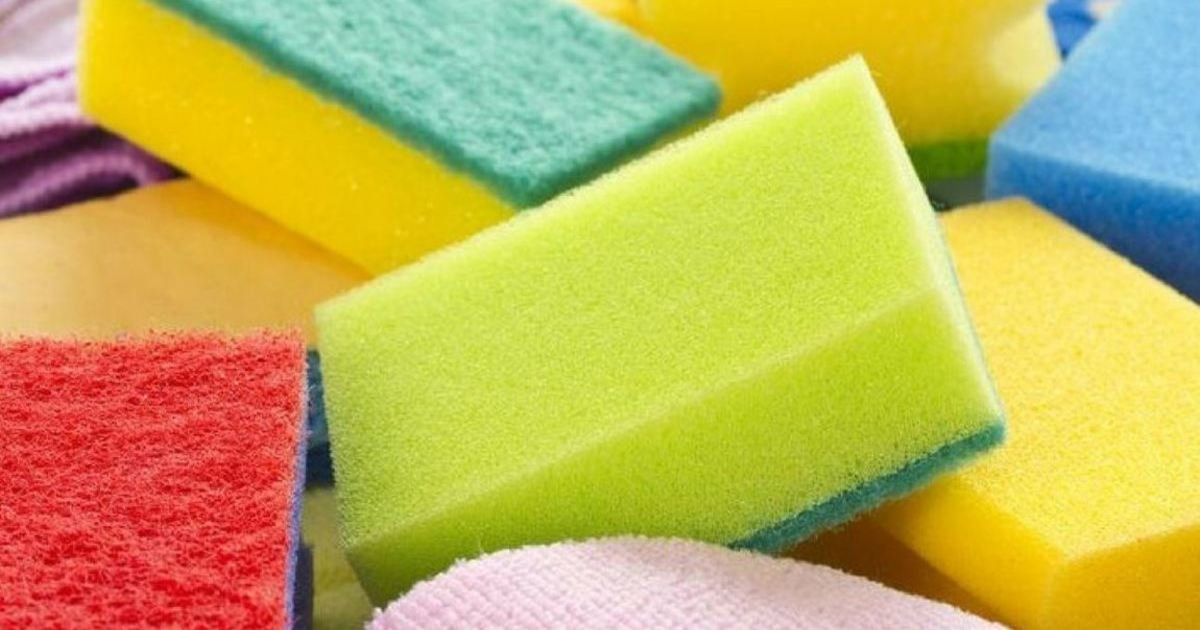 14 18.jpg?resize=1200,630 - 15 Unconventional Ways To Use A Sponge