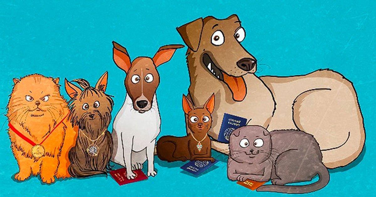17 19.jpg?resize=1200,630 - 10+ Cosas de las que nos damos cuenta cuando adoptamos un perro de refugio