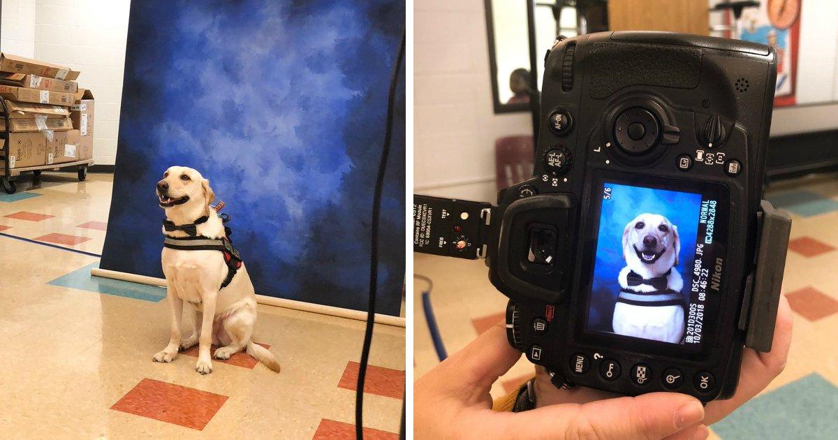 181011 305.jpg?resize=648,365 - 「幫狗狗拍畢業照」,學校和攝影師超暖心的行動惹哭眾網友