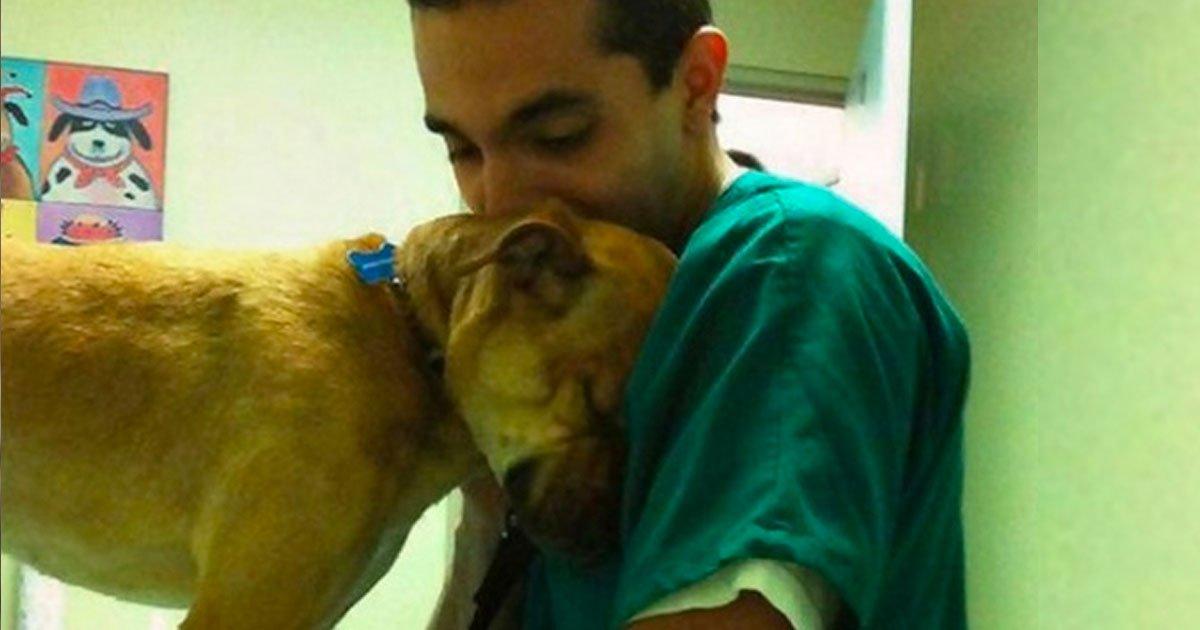 19 21.jpg?resize=1200,630 - 14 Animales que no olvidaron agradecer a las personas que los ayudaron