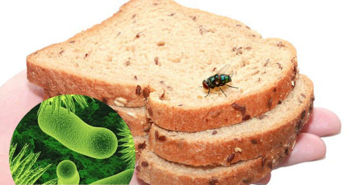 食べ物に虫がついた後の食べ物って害があるんで …