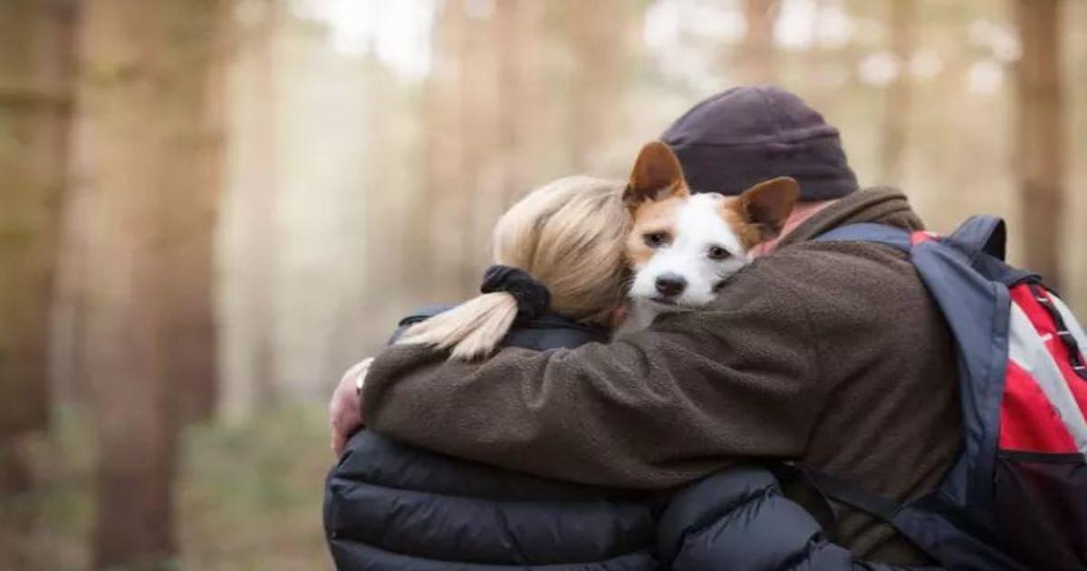 25 2.jpg?resize=1200,630 - 15 Amazing Winning Entries to Dog Photographer of the Year 2017