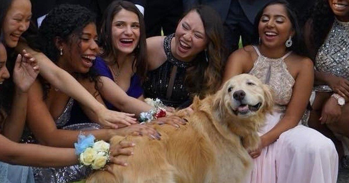 3 48.jpg?resize=1200,630 - 19 Fotos conmovedoras que prueban que el amor entre los animales y las personas es mutuo