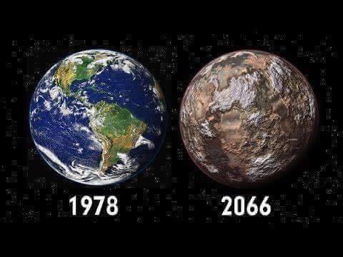 42985406 1873182796050644 1479352651329044480 n.jpg?resize=412,232 - 「那只是一根吸管」乘以74億人:地球人,看看你們做得好事!