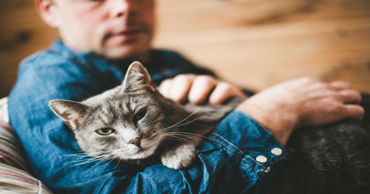 5 70.jpg?resize=636,358 - Décodez le comportement de votre chat: 17 choses que votre chat aimerait vous dire