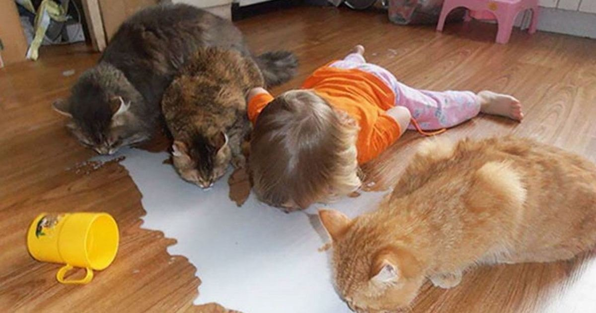 6 50.jpg?resize=636,358 - 29 Pics That Prove Kids Should NOT Be Left Alone With the Family Pet
