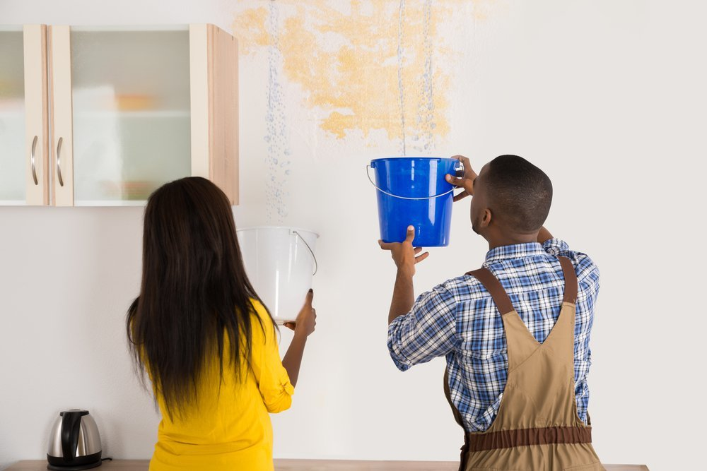 Young African Woman Standing With Worker Collecting Water In Bucket From Ceiling In House