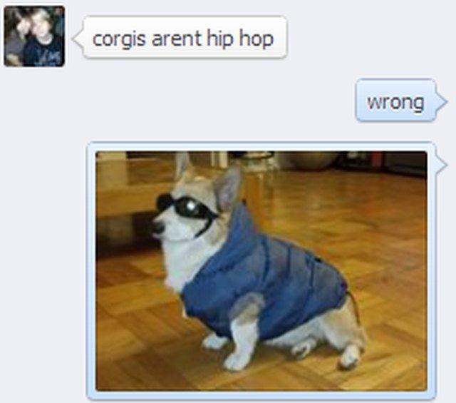 A funny meme about corgis being hip hop