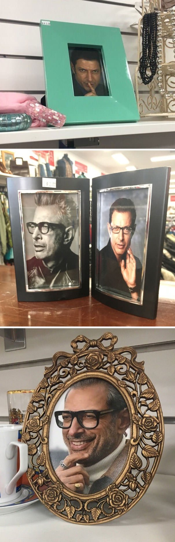 Someone Who Works At A Charity Shop Put Jeff Goldblum In Every Single Photo Frame